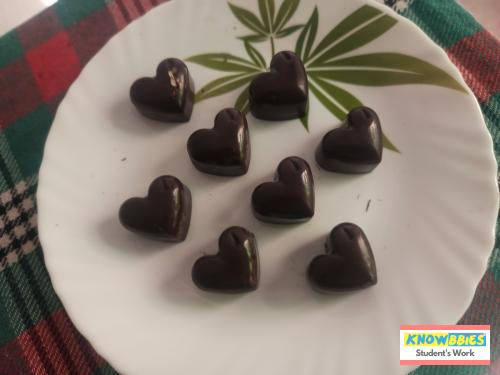 Online Course in Umbergaon For Chocolate Making Video Course (Pre-Recorded) in Hindi