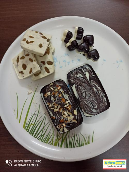 Online Course in Jodhpur For Chocolate Making Video Course (Pre-Recorded) in Hindi