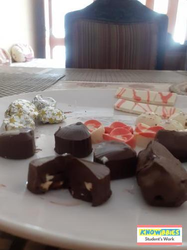 Online Course in Jaipur For Chocolate Making Video Course (Pre-Recorded) in Hindi