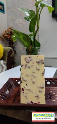 Online Course in Panipat For Chocolate Making Video Course (Pre-Recorded) in Hindi
