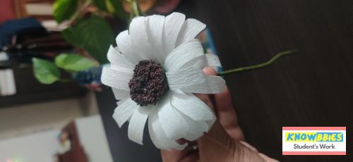 Online Course in Belagavi For Paper Flower Chocolate Bouquet Making Video Course (Pre-Recorded) in Hindi