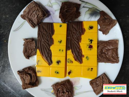 Online Course in Surat For Chocolate Making Video Course (Pre-Recorded) in Hindi