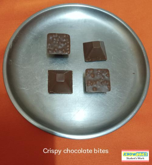 Online Course in Madanapalli For Chocolate Making Video Course (Pre-Recorded) in Hindi
