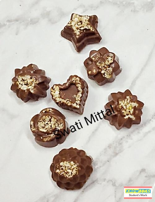 Online Course in Delhi For Chocolate Making Video Course (Pre-Recorded) in Hindi
