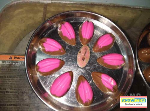 Online Course in Vijayawada For Chocolate Making Video Course (Pre-Recorded) in Hindi